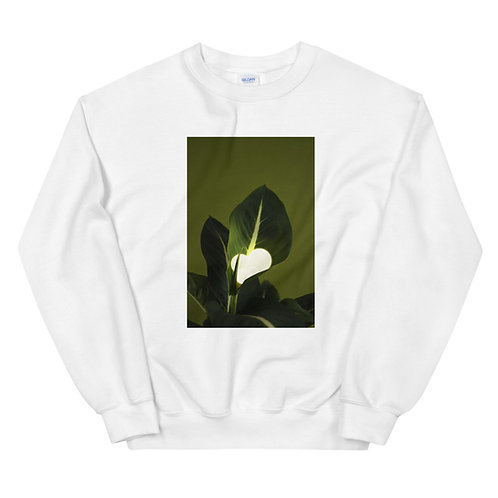 Natural Glow #3