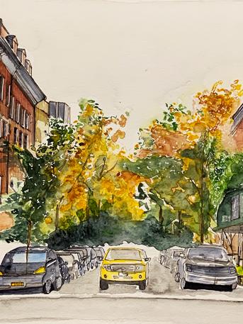 November - NY.png