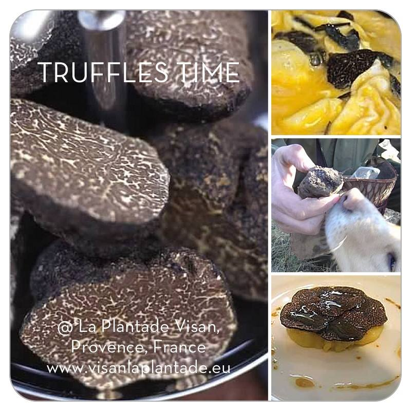 TRUFFLES WEEK-END