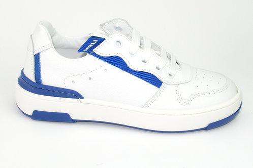MORELLI/51302/sneaker wit accent kobalt