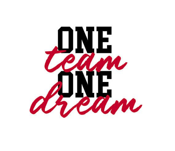 ONE TEAM ONE DREAM.jpg