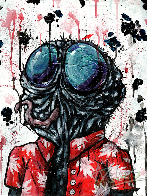 FLY GUY ARTWORK (INCLUDES REAL FLIES)