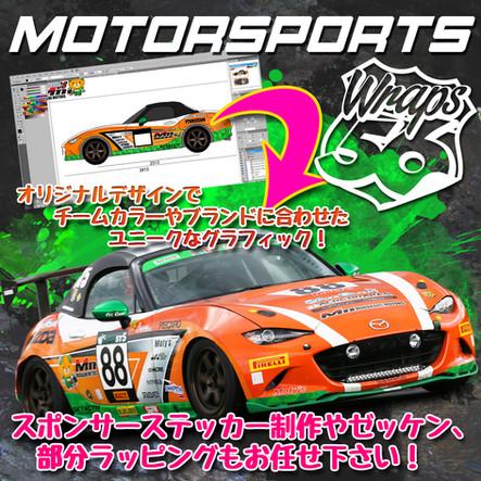 motorsports3.jpg
