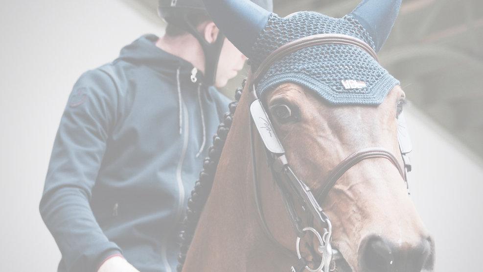Horseback Riding_edited.jpg