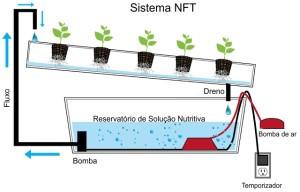 Sistema de Cultivo
