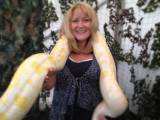 The animal sitter in ponty park with her favourite snake