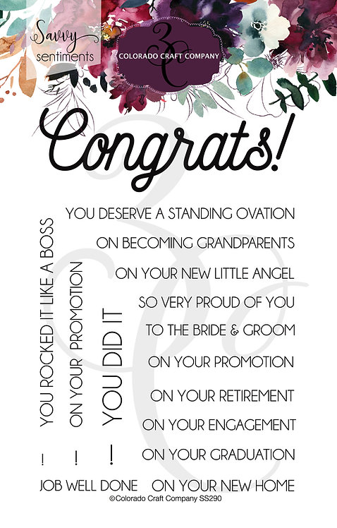 SS290 Savvy Sentiments~Congrats Everything