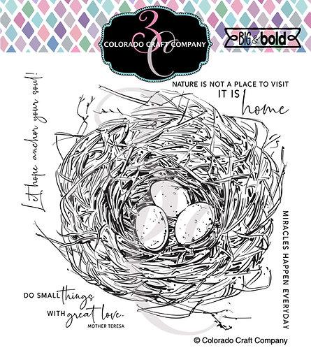 BB443 Big & Bold ~Robin's Nest