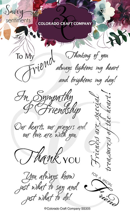 SS305 Savvy Sentiments~Friendship Greetings