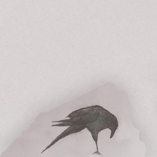 Birds_edited