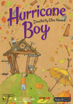 'Hurricane Boy' Poster Artwork