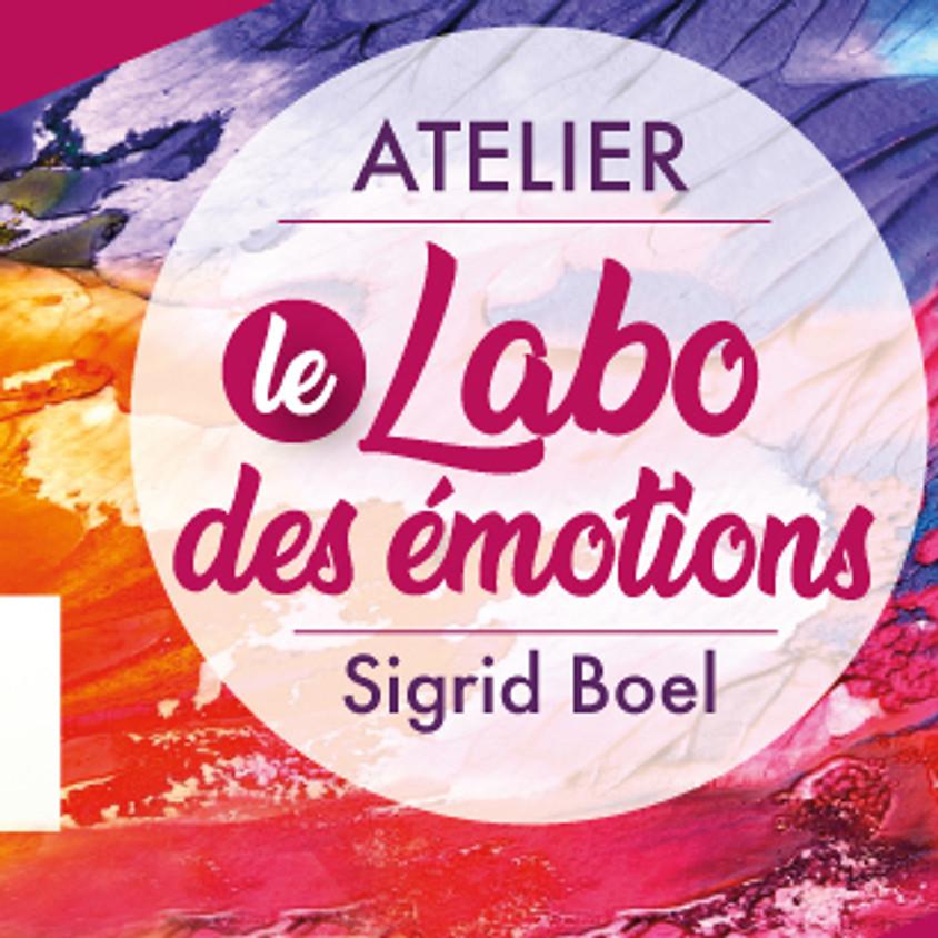Le labo des émotions #1: La roue des émotions