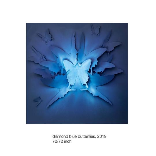 diamond blue butterflies, 2019, 72-72 in