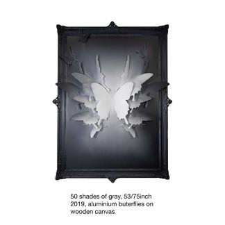 50 shades of gray, 2019 53-75inch.jpg