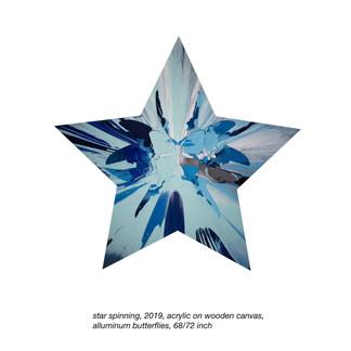 star spinning, 2019, 68-72 inch.jpg