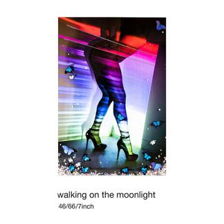 walk-on-the-moon-light-copy.jpg