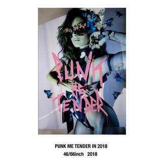 punkmetender-in-2018-46-66inch-2018-copy