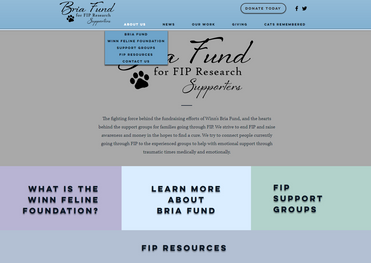 Bria Fund About