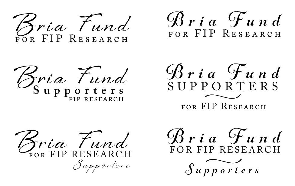 Bria Fund Supportes logo options