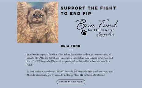 Bria Fund Home