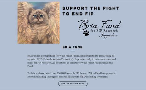 Bria Fund _1.PNG