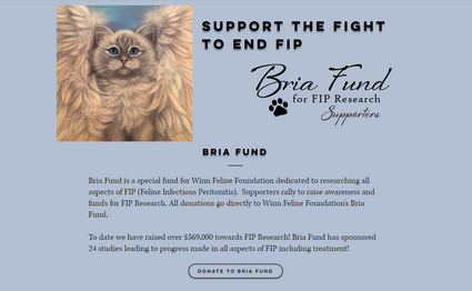 Bria Fund Home
