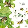 les-insectes_bd.jpg