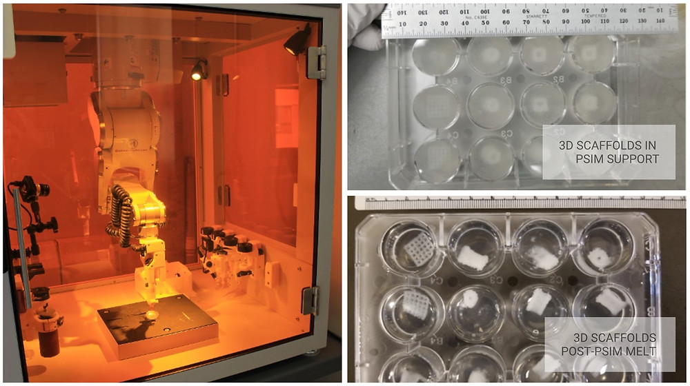 BioAssemblyBot 3D bioprinting porous, cell-laden scaffolds with a two-step biofabrication process