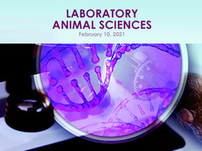 Human In Vitro Vascularized Tissue Models at the Laboratory Animal Sciences Conference