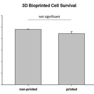 3D Bioprinted Cell Survival