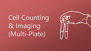 Cell Counting and Imaging (Multi-Plate)