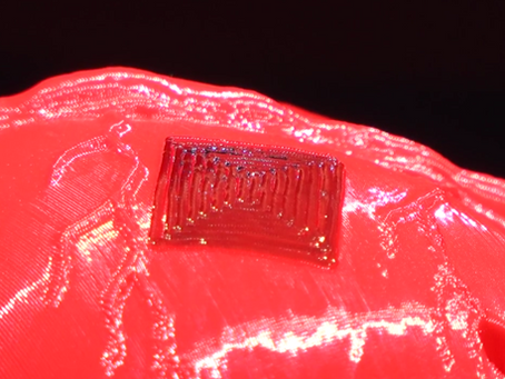From Scanning to 3D Bioprinting - BAB Does It All