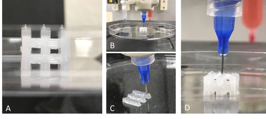 Figure 3 - Lattice printing with PDMS. A) Final printed lattice structures. B/C/D) Lattice construct at various stages during print process.