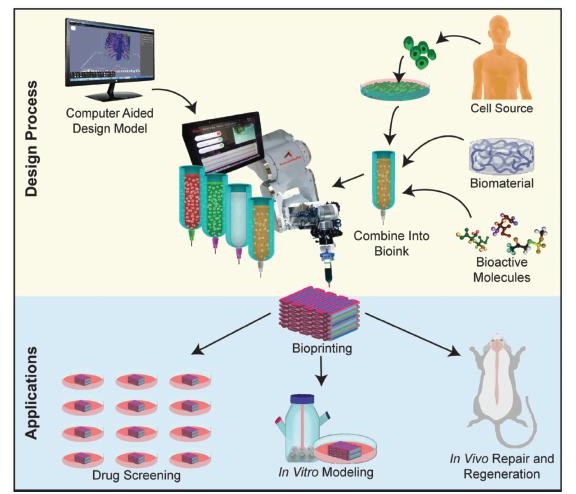 3D Bioprinting of Neural Tissues