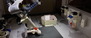 BioAssemblyBot contour 3D printing a two-part cartilage bioink onto a femoral head model