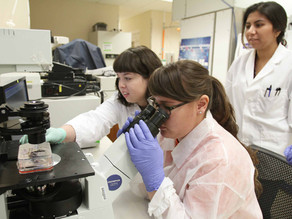 UTEP Explores 3D Bioprinting Scalability: BioAssemblyBot® vs. Cellink's BioX™