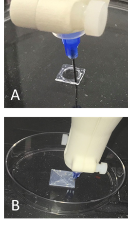 Figure 1 - PDMS prints demonstrating ink surface adhesion and coherence.