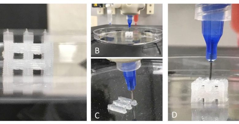 3d tissue constructs using a BioAssemblyBot