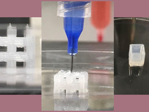 PDMS Printing with BioAssemblyBot