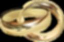 Anillos-de-matrimonio-Doña-Anita.png