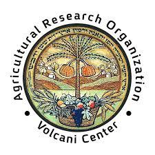 ARO Logo