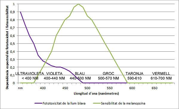 Gràfic de la fototoxicitat de la llum blava i de la sensibilitat de la melanopsina