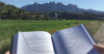 Imatge simulada de la visió que proporciona un progressiu premium