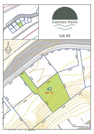 Cannon Point_Lot 42.jpg
