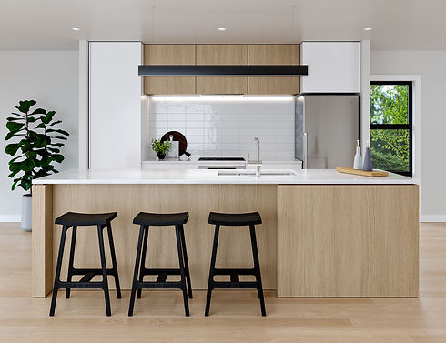 35 LUDLAM_INT_Kitchen_V1_02.jpg