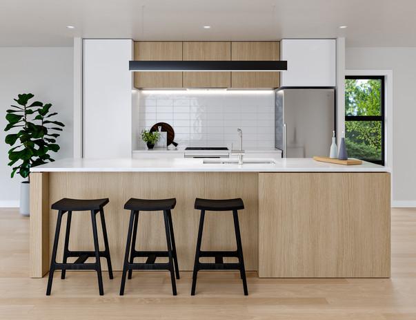 35 LUDLAM_INT_Kitchen_V1_02.jpg