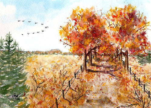 The Road Less Traveled, Autumn's Homecoming