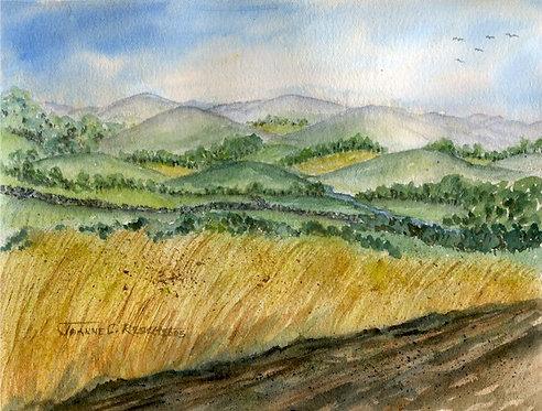 Mohawk Valley Landscape