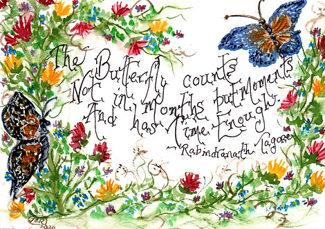 Butterfly Moments