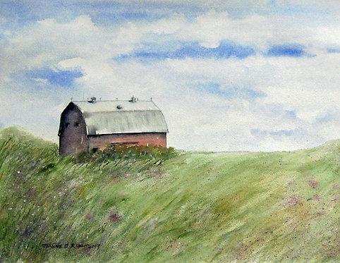 Barn & Phlox Field